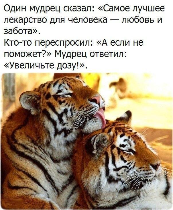 http://s2.uploads.ru/j4rPh.jpg