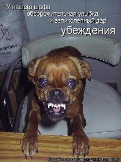 http://s2.uploads.ru/mOhny.jpg