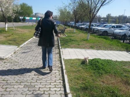 http://s2.uploads.ru/rAXWm.jpg