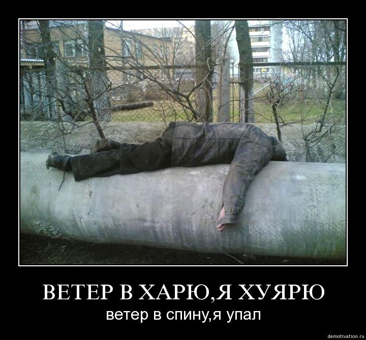 http://s2.uploads.ru/s5gWK.jpg