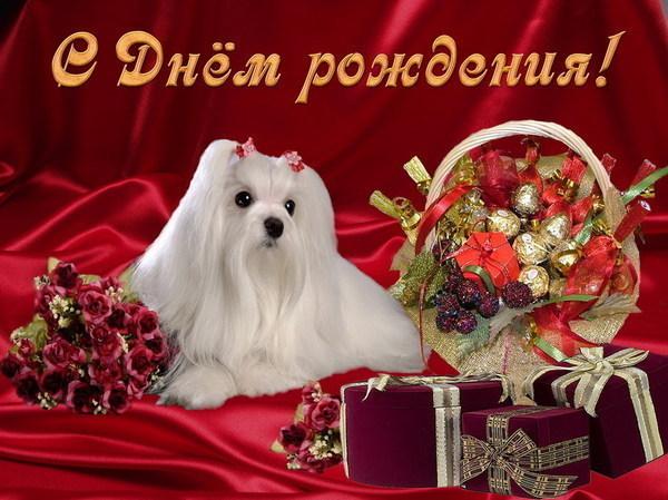 http://s2.uploads.ru/sBOXL.jpg