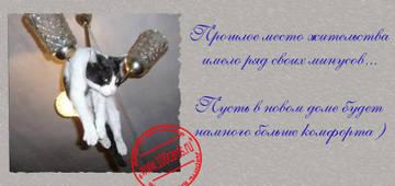 http://s2.uploads.ru/t/1KINT.jpg