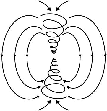 ДНК - DNA