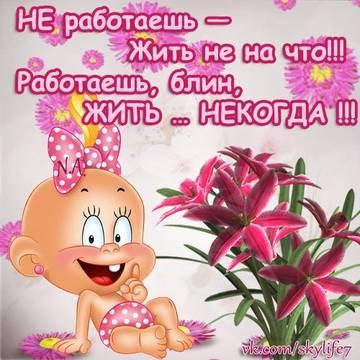 http://s2.uploads.ru/t/5rUwi.jpg