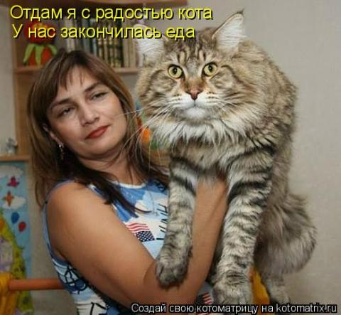 http://s2.uploads.ru/t/A9DSE.jpg
