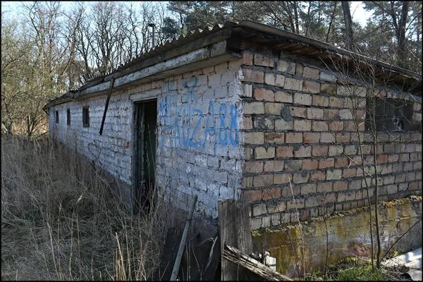 http://s2.uploads.ru/t/AePxW.jpg
