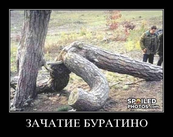 http://s2.uploads.ru/t/IktSC.jpg
