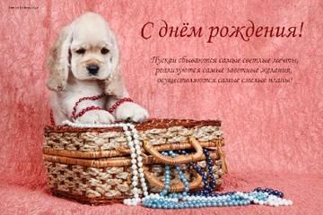 http://s2.uploads.ru/t/JQdlO.jpg