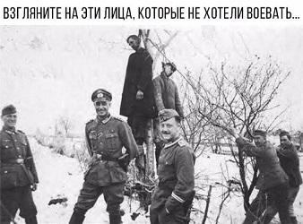 http://s2.uploads.ru/t/NSf8U.jpg