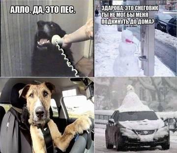http://s2.uploads.ru/t/OPtST.jpg
