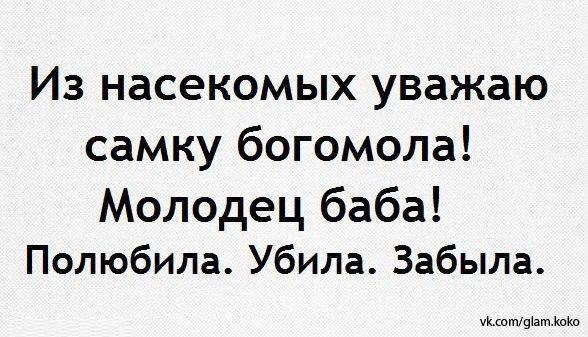 http://s2.uploads.ru/t/Om8DL.jpg