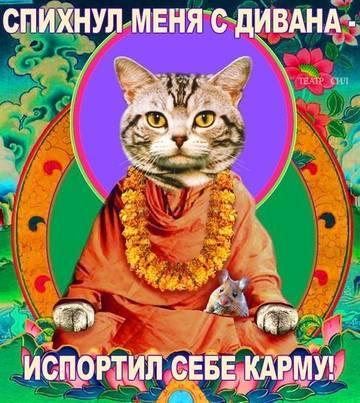 http://s2.uploads.ru/t/PGcuh.jpg