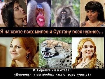 http://s2.uploads.ru/t/VC81A.jpg