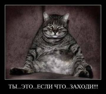http://s2.uploads.ru/t/YQspd.jpg