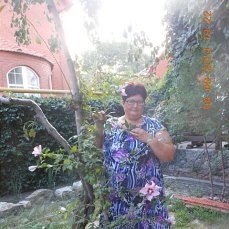 http://s2.uploads.ru/t/YoXME.jpg