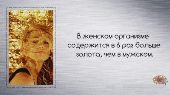 http://s2.uploads.ru/t/bGTK7.jpg