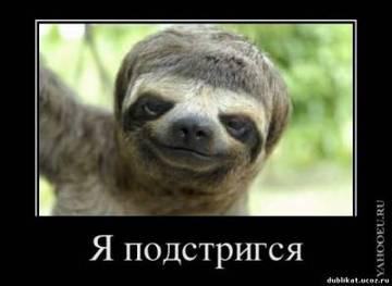 http://s2.uploads.ru/t/dRNn8.jpg