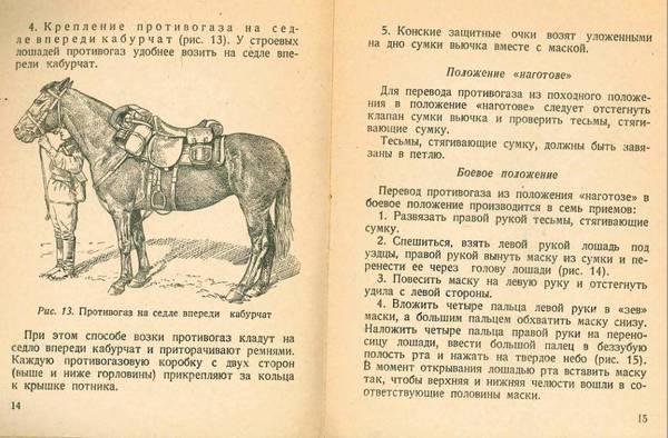 http://s2.uploads.ru/t/eRPiV.jpg