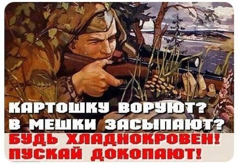 http://s2.uploads.ru/t/gWD83.jpg