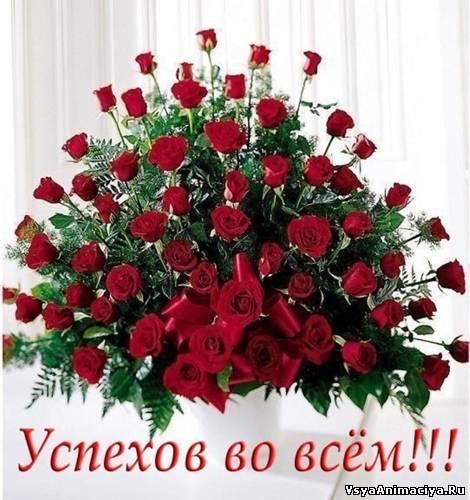 http://s2.uploads.ru/t/hDAIe.jpg