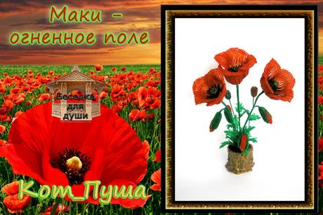 http://s2.uploads.ru/t/jOyCl.jpg