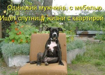 http://s2.uploads.ru/t/jtvW7.jpg