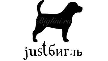 http://s2.uploads.ru/t/oM1ie.jpg