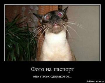 http://s2.uploads.ru/t/qoVry.jpg