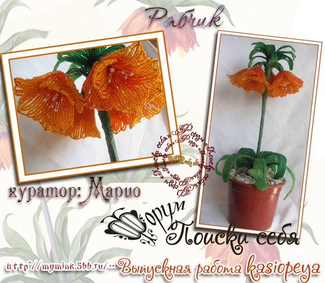 http://s2.uploads.ru/ucbWE.jpg